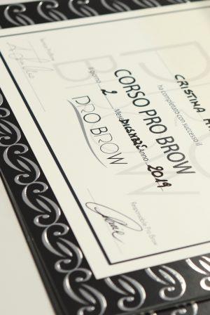 diploma pro brow